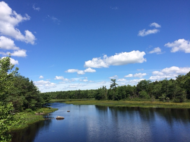 Exquisite view along the BLT Rails to Trails during our 12km walk. Photo: Barb Morgan 31 Jul 2016